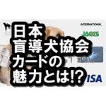 日本盲導犬協会カードは高還元率クレカ!寄付もできてメリットいっぱい!